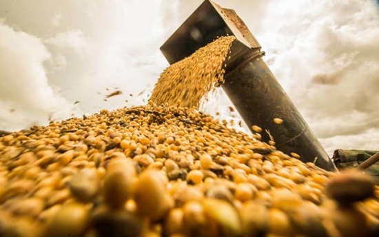 Novo recorde: Exportações do Agro em maio somam US$ 10,9 bilhões