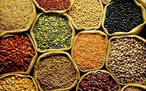 Conab aponta recorde na produção de grãos com 253,7 milhões de toneladas