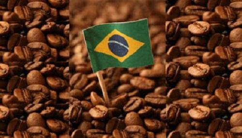 EUA maior importador adquire 20% dos Cafés do Brasil, Alemanha 18% e Itália 10%