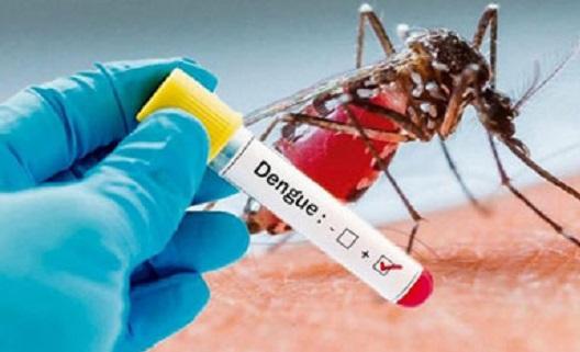 Dengue: Franca registrou 43 casos positivos e aguarda 398 resultados de exames