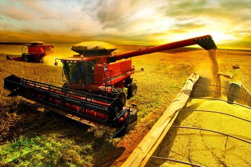 PIB agropecuário em 2021 deve ter crescimento de 3,2%, diz Ipea