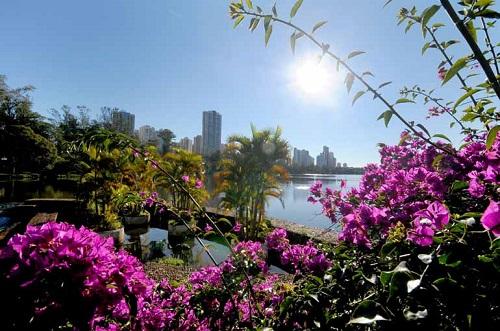 Primavera começa hoje e traz chuvas em boa parte do Brasil; Veja!