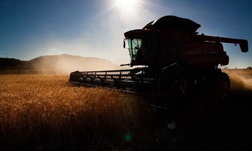 Outono e agricultura são influenciados pelo fenômeno La Niña