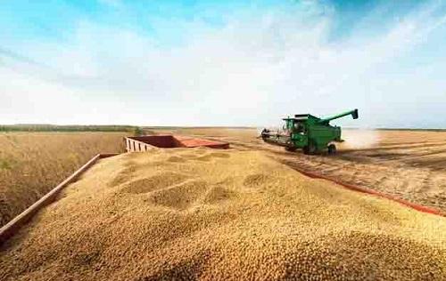Banco do Brasil destina R$ 16 bilhões para pré-custeio do agro