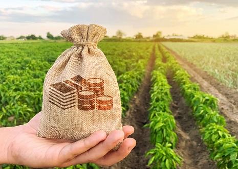 Dívida do agro de R$ 700 bilhões coloca economia em risco no país