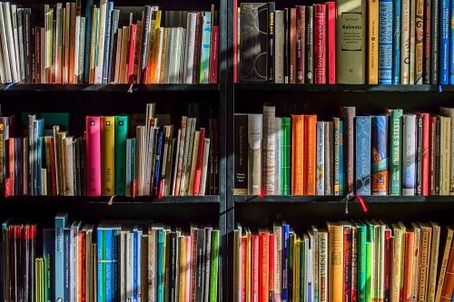 Biblioteca Municipal abre inscrições para confecções de livros artesanais