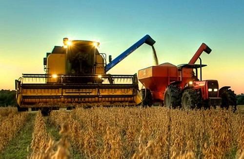 Produção de grãos deve atingir 251,4 milhões de toneladas, diz  Conab